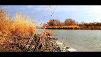 Кормаки в феврале на реке - Дневник рыболова