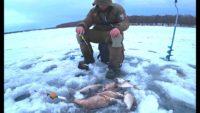 Ловля леща в январе- Рыбалка 62