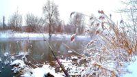 Трудности зимы 2021 года — Павел Теплов