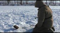 Ловля чехони со льда - Рыбалка 62