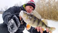 Зимняя рыбалка на балансир - Туристории