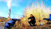 Ловля карася на фидер в апреле - Дневник рыболова