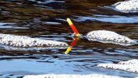 Ловля плотвы весной на поплавок — Рыбалка на реке