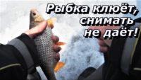 Рыбка клюёт, снимать не даёт... — ПашАсУралмашА