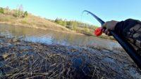 Ловля карася на боковой кивок и поплавок - Рыбалка 68
