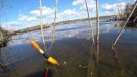 Ловля карася на поплавочную удочку - Рыбалка 68