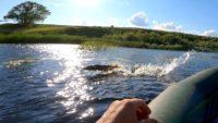 Ловля щуки в сильный ветер на спиннинг с лодки — Рыбалка на реке