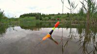 Рыбалка на утренней зорьке на поплавок - Рыбалка 68