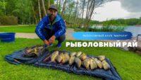Бешеный клев линя и карпа — Рыболовный дневник