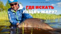 Лещ в жару — Рыболовный дневник