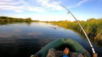Пассивная щука на снасточку не ловилась, а поставил колебалку и сразу поймал — Рыбалка на реке