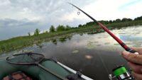 Поппер в кувшинках - Рыбалка 68