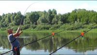 Ловим леща, судака и жереха - Рыбалка 62