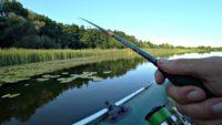 Окунь крупнее щуки - Рыбалка 68
