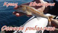 Осенняя рыбалка в Евпатории