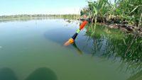 Рыбалка на деревенском пруду на поплавок - Рыбалка 68