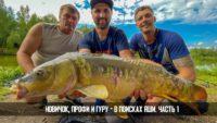Как поймать трофейного карпа на флэт-фидер — Рыболовный дневник