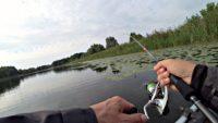 Ловля щуки на спиннинг в кувшинках - Рыбалка 68