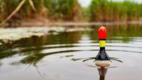 Сейсмический поплавок на карася — Самодельная рыбалка