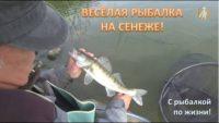 Веселая рыбалка на Сенеже — С рыбалкой по жизни!