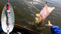 Крупная щука на спиннинг осенью - Рыбалка на реке