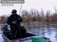 """Видео """"Диалоги о рыбалке"""" - Ловля сома на Нижней Волге"""