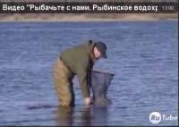 """Видео """"Рыбачьте с нами"""" - Рыбинское водохранилище. Плотва. Лещ"""