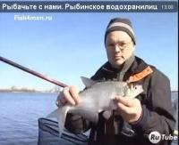 """Видео """"Рыбачьте с нами"""" - Рыбинское водохранилище. Синец, плотва, лещ"""
