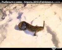 """Видео """"Рыбачьте с нами"""" - Апрель 2010"""