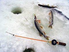 Зимняя ловля щуки