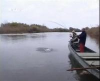 """Видео """"Рыбачьте с нами"""" - Дельта Волги"""