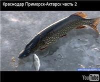"""Видео """"Диалоги о рыбалке"""" - Краснодар. Приморск-Ахтарск. Щука. Часть 2"""