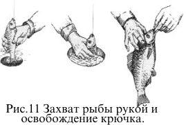 Захват рыбы