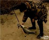 """Видео """"Диалоги о рыбалке"""" - Подмосковье, Бронницы. Спиннинговый турнир"""