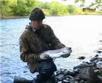 Видео «Клёвое место» — Камчатка. Река Карамчина