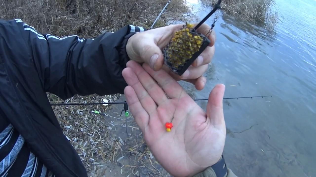 все о раках рыбалка