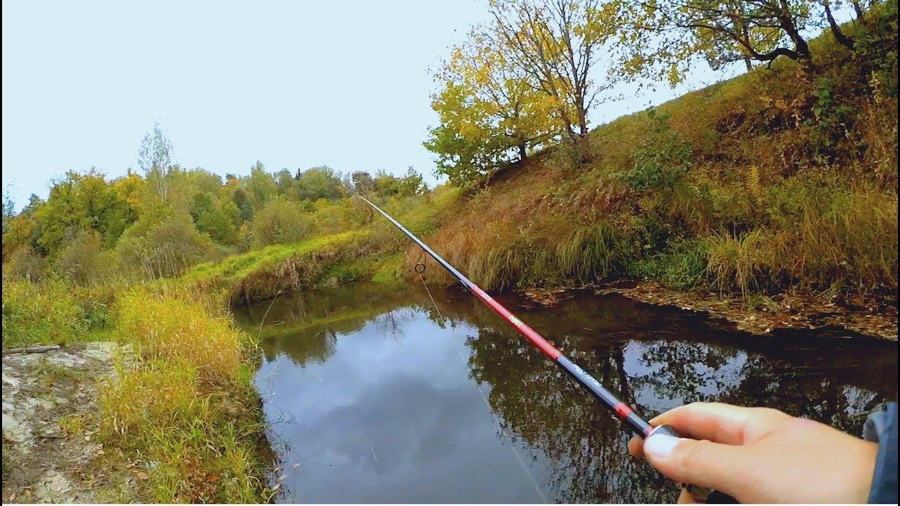 Рыбалка осенью на клязьме